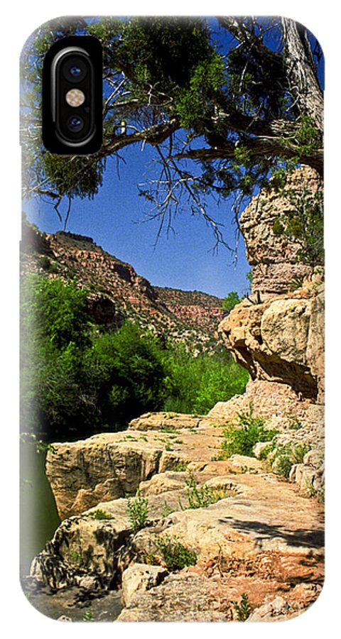 Arizona IPhone X Case featuring the photograph Sycamore Canyon by Kathy McClure
