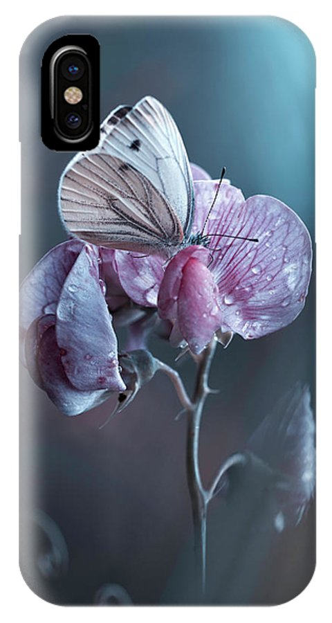 Butterfly IPhone X Case featuring the photograph Tainted Love by Fabien Bravin