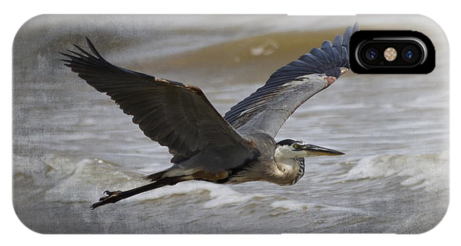 Heron IPhone X Case featuring the photograph Take To The Sky #3 by TN Fairey