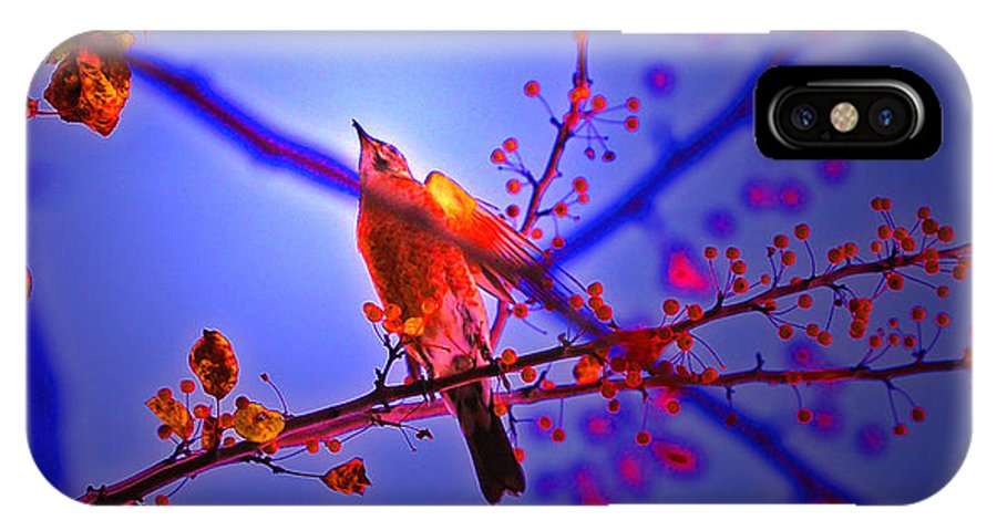 First Star Art IPhone X Case featuring the photograph Taking Flight By Jrr by First Star Art