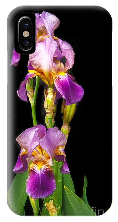 Flower IPhone X Case featuring the photograph Tall Iris by Robert Bales
