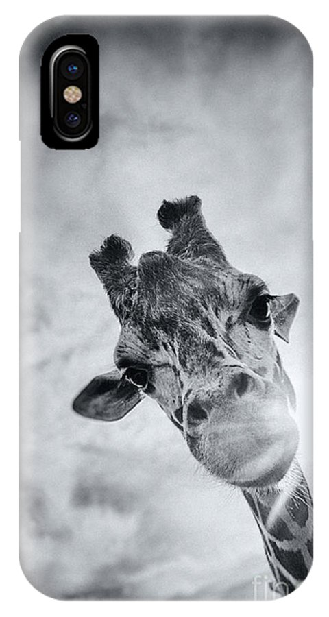 Giraffe IPhone X Case featuring the photograph Taller Than Me by Aeon Art
