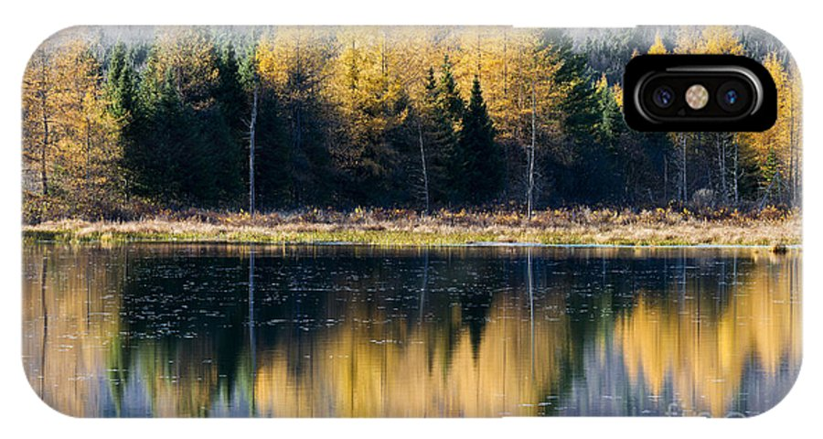 Fall IPhone X Case featuring the photograph Tamarack Reflections by Alan L Graham