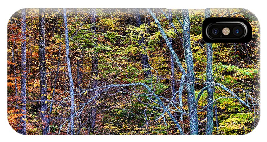 Fall Colors IPhone X Case featuring the photograph Tangled Tennessee by Matthew Winn