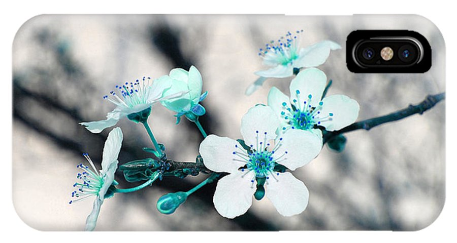 Blossom IPhone X Case featuring the photograph Teal Blossoms by Debra Thompson