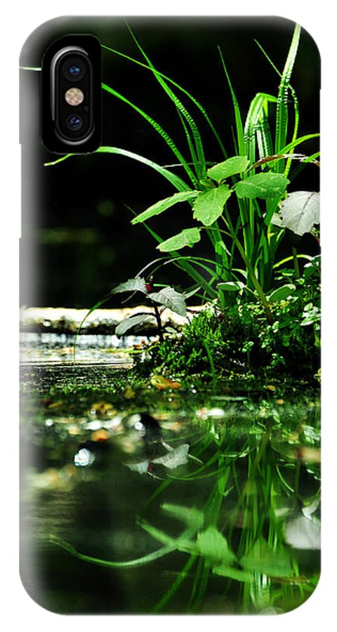 Swamp IPhone X / XS Case featuring the photograph Tears And Mirth by Rebecca Sherman