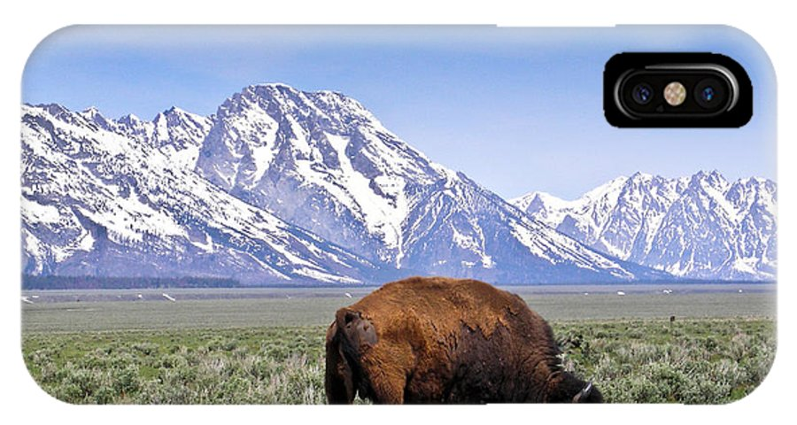Tetons IPhone X Case featuring the photograph Tetons Buffalo Range by Douglas Barnett