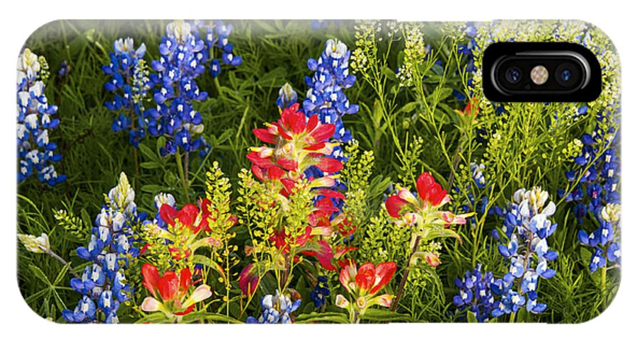 Texas Spring Springtime Wildflower Wildflowers Flower Flowers Plant Plants Bluebonnet Bluebonnets Indian Paintbrush Nature Still Life Nature Spring IPhone X Case featuring the photograph Texas Spring by Bob Phillips