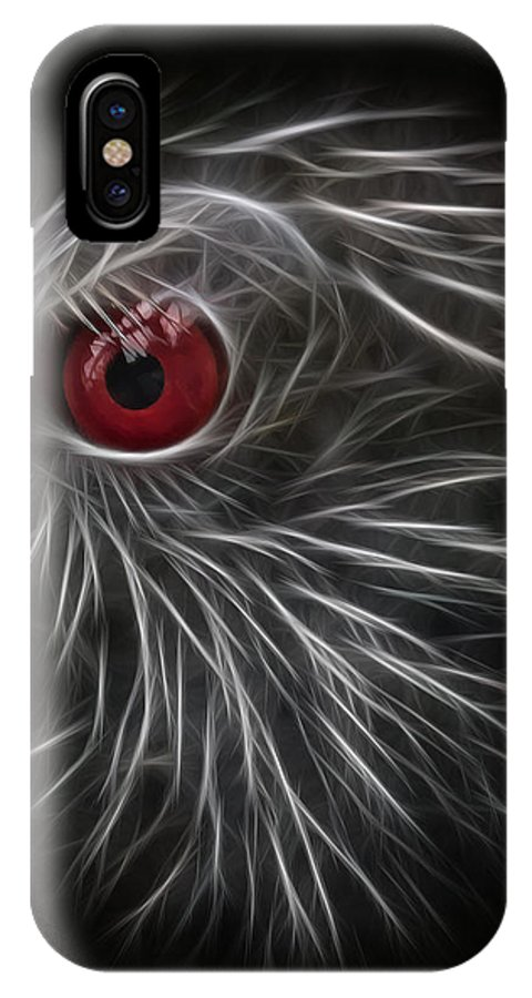 Eye IPhone X Case featuring the photograph The All Seeing Eye by Sharon Moore