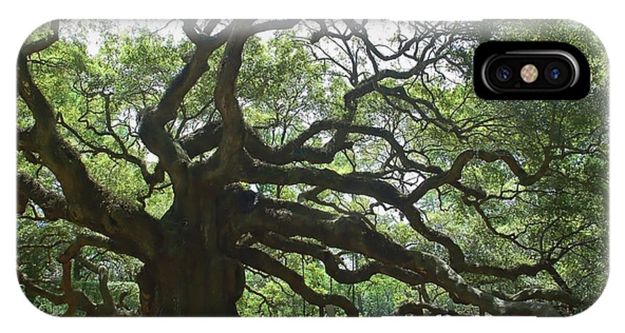 Angel Oak IPhone X Case featuring the photograph The Angel Oak by Suzanne Gaff