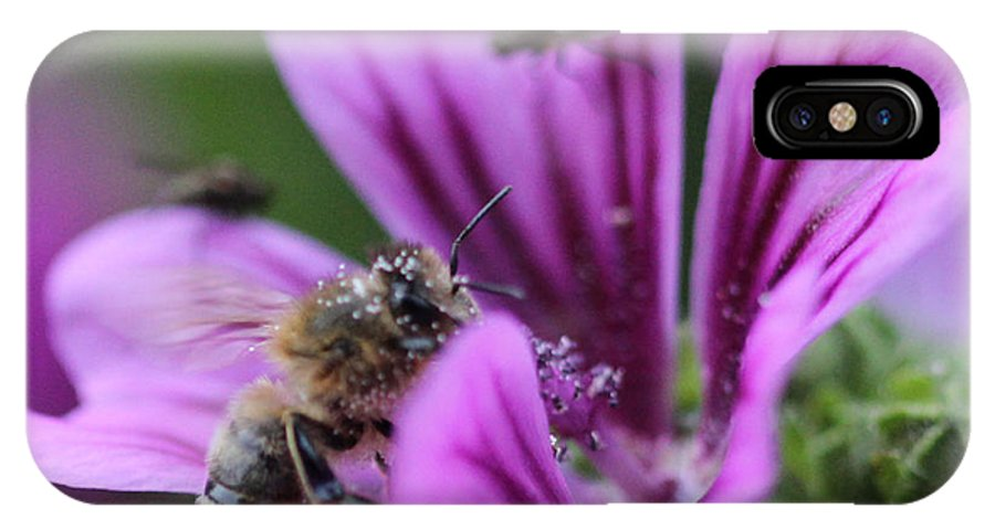 Flowers IPhone X Case featuring the photograph The Bee by Four Hands Art