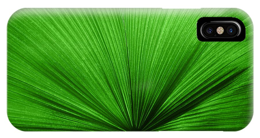 Leaves IPhone X Case featuring the photograph The Big Green Leaf by Natalie Kinnear