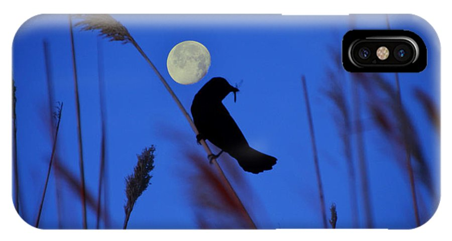 Blackbird IPhone X / XS Case featuring the photograph The Blackbird And The Moon by Bill Cannon