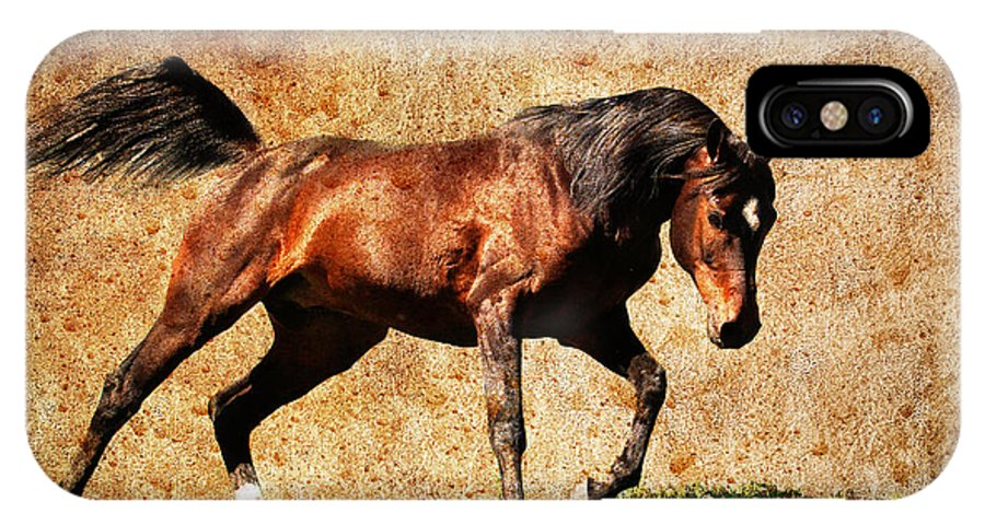Wild Horses IPhone X Case featuring the photograph The Charge by Steve McKinzie