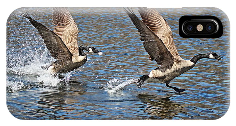 Geese IPhone X Case featuring the photograph The Chase by DVP Artography