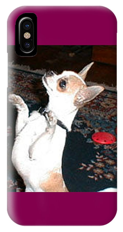 Chihuahua IPhone X Case featuring the photograph The Dance by Leah Delano