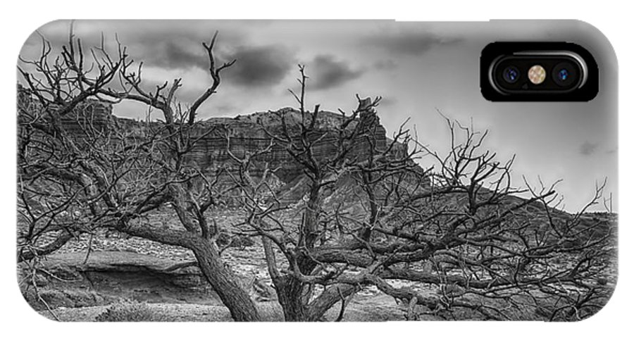 B&w IPhone X Case featuring the photograph The Dead Pinion Tree Hdr Bw by Mitch Johanson