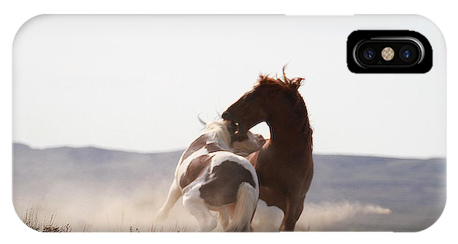 Mustangs IPhone X Case featuring the photograph The Duel by Nancy Wolfe