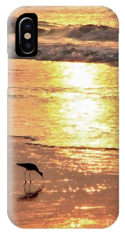 Landscape IPhone X Case featuring the photograph The Early Bird by Todd Blanchard