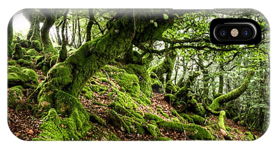 Forest IPhone X / XS Case featuring the photograph The Elven Forest No2 Wide by Weston Westmoreland