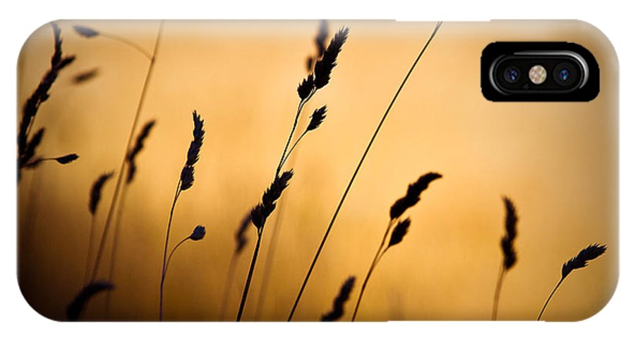 Filed At Sunset IPhone X Case featuring the photograph The Field by Dave Bowman