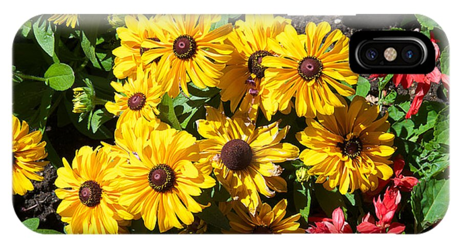 Flowers IPhone X Case featuring the photograph The Flower 16 by Richard J Cassato