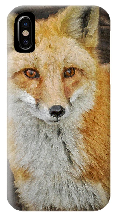 Fox IPhone X Case featuring the digital art The Fox 8 by Ernie Echols