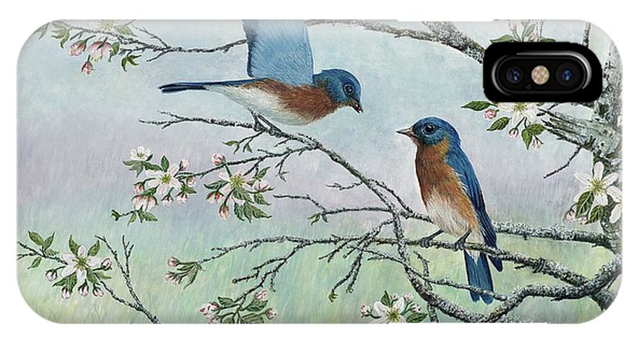 Bluebirds; Trees; Wildlife IPhone X Case featuring the painting The Gift by Ben Kiger