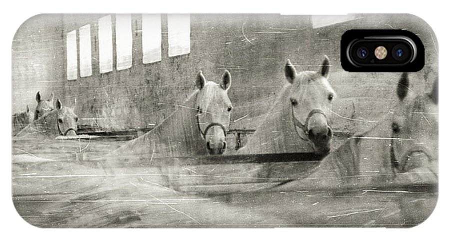 Grey IPhone X Case featuring the photograph The Grey Mares by Angel Ciesniarska
