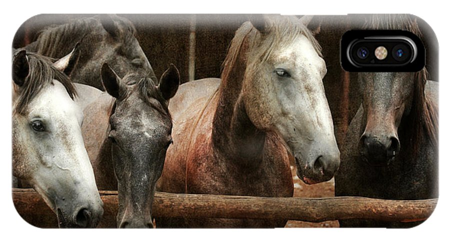 Horse IPhone X Case featuring the photograph The Horses by Angel Ciesniarska