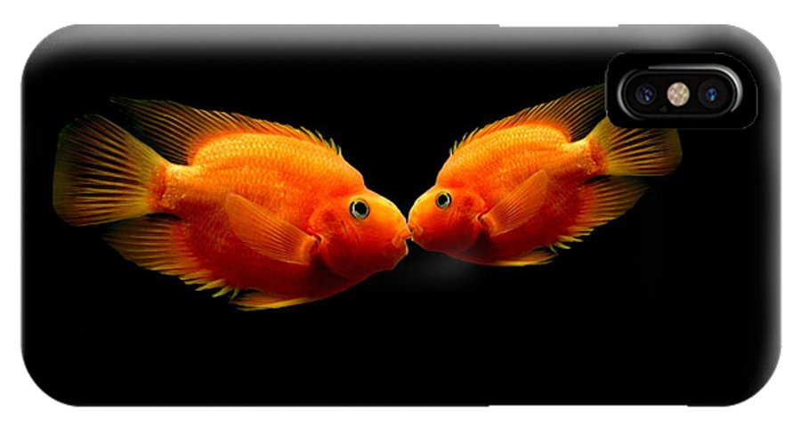 Fish IPhone X Case featuring the photograph The Kiss by Heike Hultsch