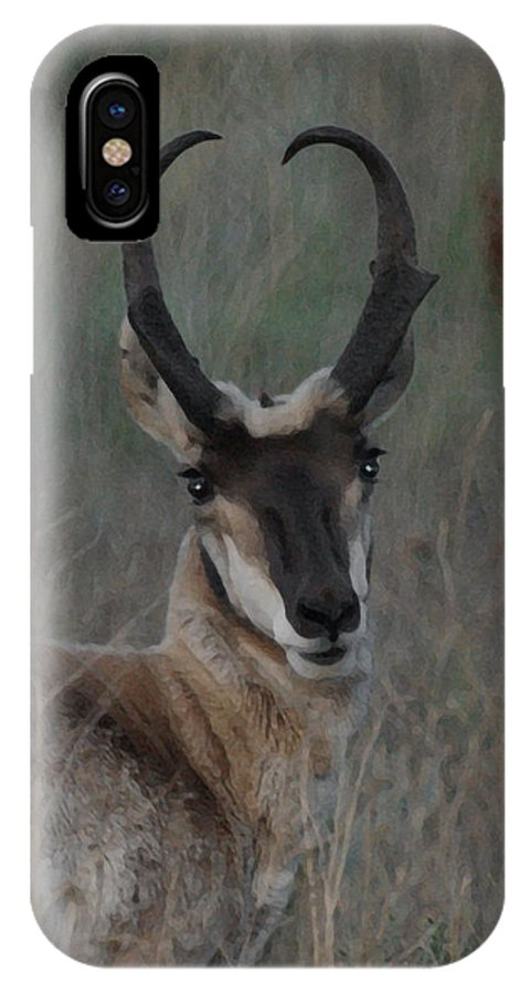 Animals IPhone X Case featuring the digital art The Pronghorn 2 Dry Brushed by Ernie Echols