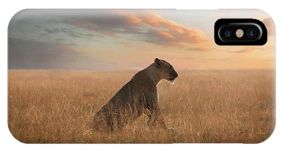 Lion IPhone X Case featuring the photograph The Queen by Bjorn Persson
