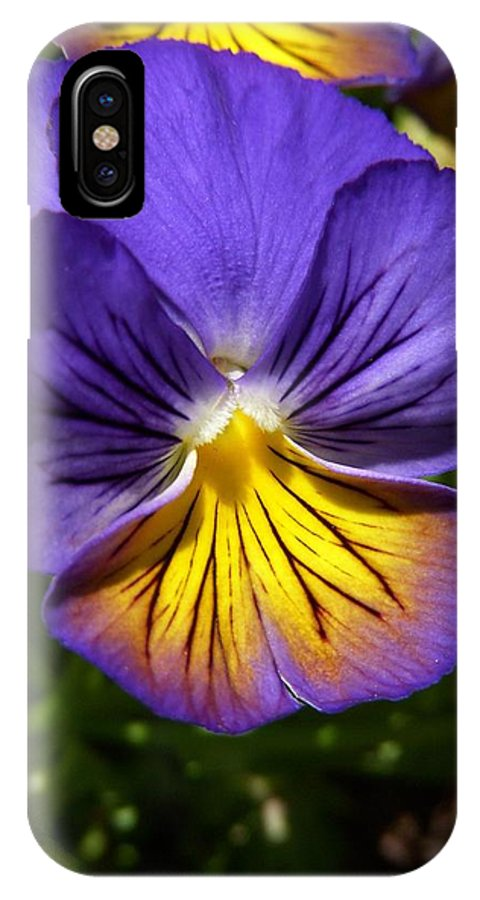 Pansy IPhone X Case featuring the photograph The Queen's Gown by Terri Waselchuk