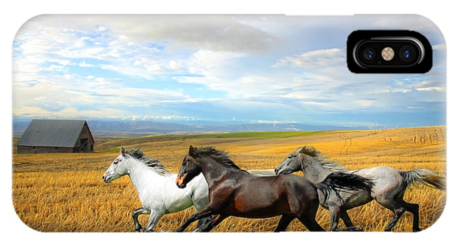 White Horses IPhone X Case featuring the photograph The Race by Steve McKinzie