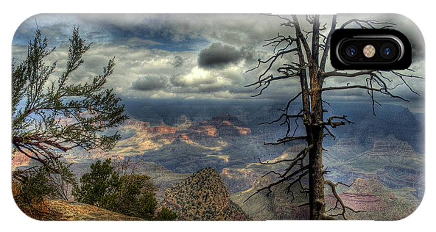 The Grand Canyon IPhone X Case featuring the photograph The Raven's Perch by K D Graves