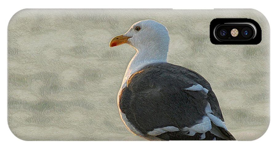Seagull IPhone X Case featuring the photograph The Seagull by Ernie Echols