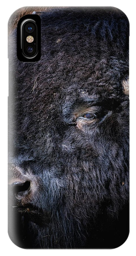 Crystal Yingling IPhone X Case featuring the photograph The Shag by Ghostwinds Photography