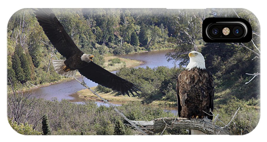 Eagle IPhone X / XS Case featuring the photograph The Silent Watch by Lori Tordsen