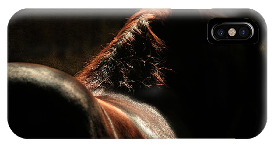 Horse IPhone X Case featuring the photograph The Silhouette by Angel Ciesniarska