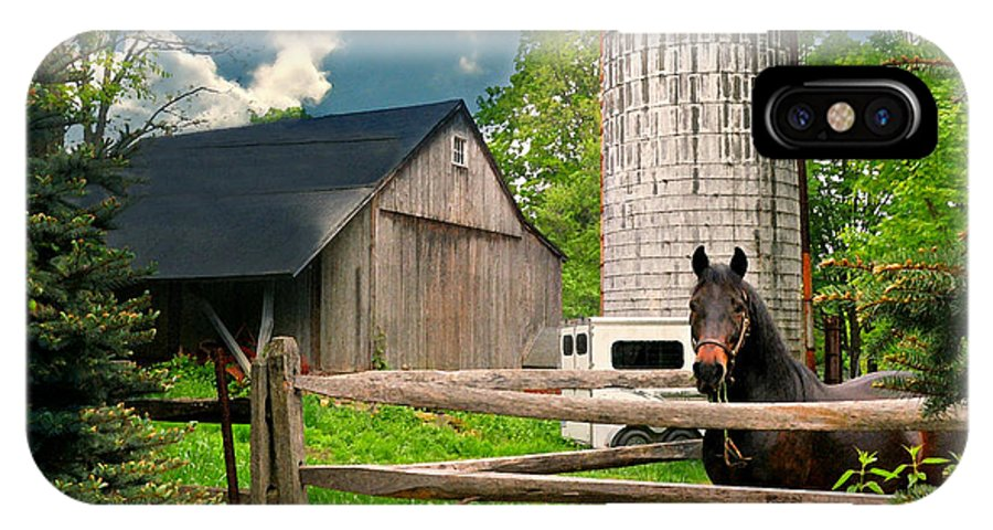 Silo IPhone X Case featuring the photograph The Silo Horse by Diana Angstadt