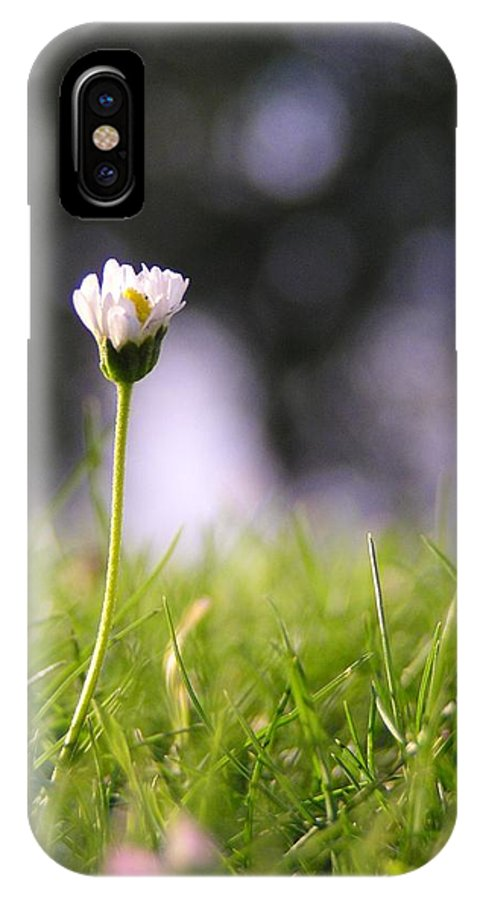 Flower IPhone X / XS Case featuring the photograph The Single Flower by SC Lee