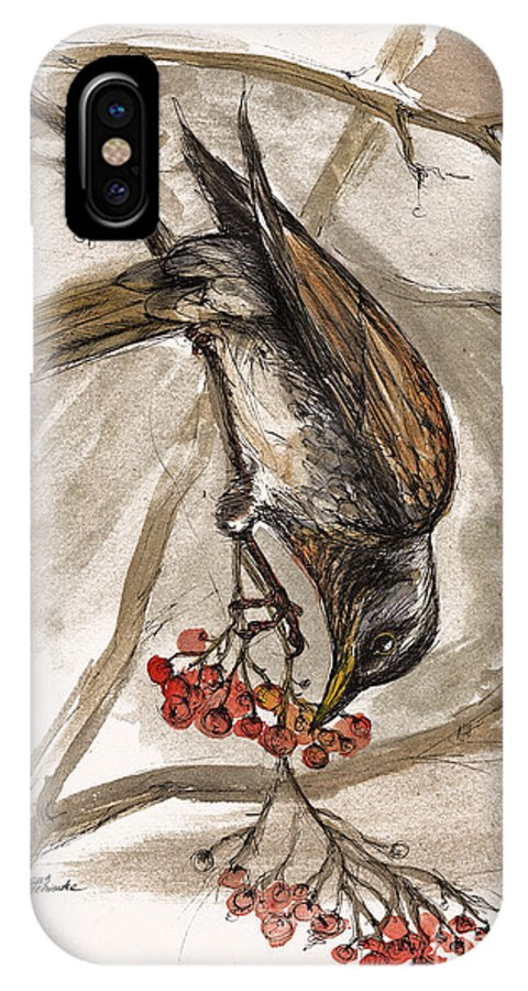 Thrush IPhone X Case featuring the painting The Thrush Eating Cranberries by Angel Ciesniarska