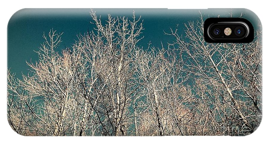Winter IPhone X / XS Case featuring the photograph The Trees Of Teal by Heather Taylor