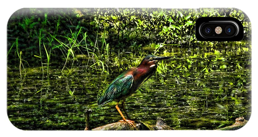 Green Herons IPhone X Case featuring the photograph The Wader by Joe Bledsoe