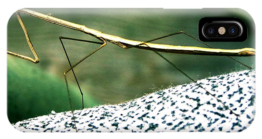 Insect IPhone X Case featuring the digital art The Wonderful Walkingstick by Raphael OLeary