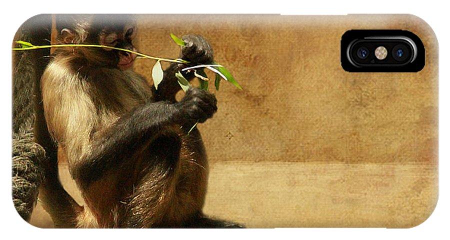Monkey IPhone X Case featuring the photograph Thinking Monkey by Christine Sponchia