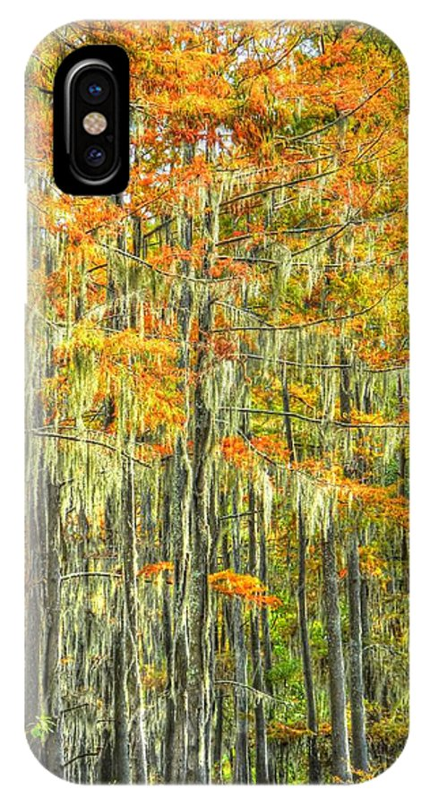 Autumn IPhone X Case featuring the photograph This Is What Autumn Brings by Ester Rogers