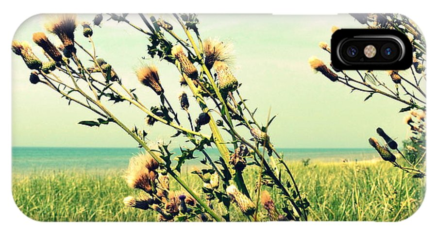 Horizon IPhone X / XS Case featuring the photograph Thistle On The Beach by Michelle Calkins