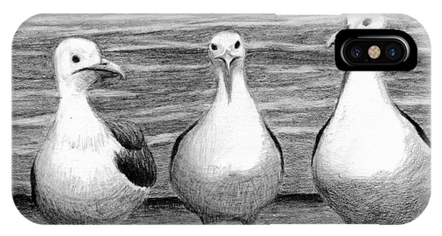 Sea Gulls IPhone X Case featuring the drawing Three Amigos by Phyllis Howard